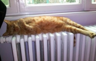 Индивидуальное отопление - новый расчет оплаты