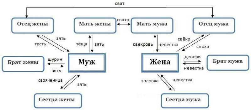 прямые родственники семейный кодекс