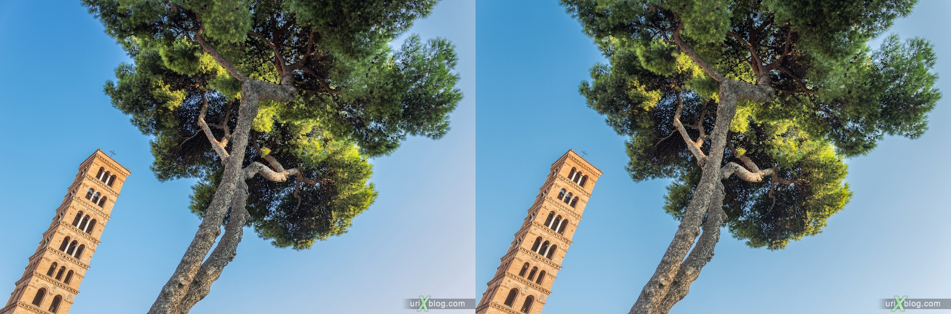 2012, Church of Santa Maria in Cosmedin, tree, sky, Forum Boarium, 3D, stereo pair, cross-eyed, crossview, cross view stereo pair