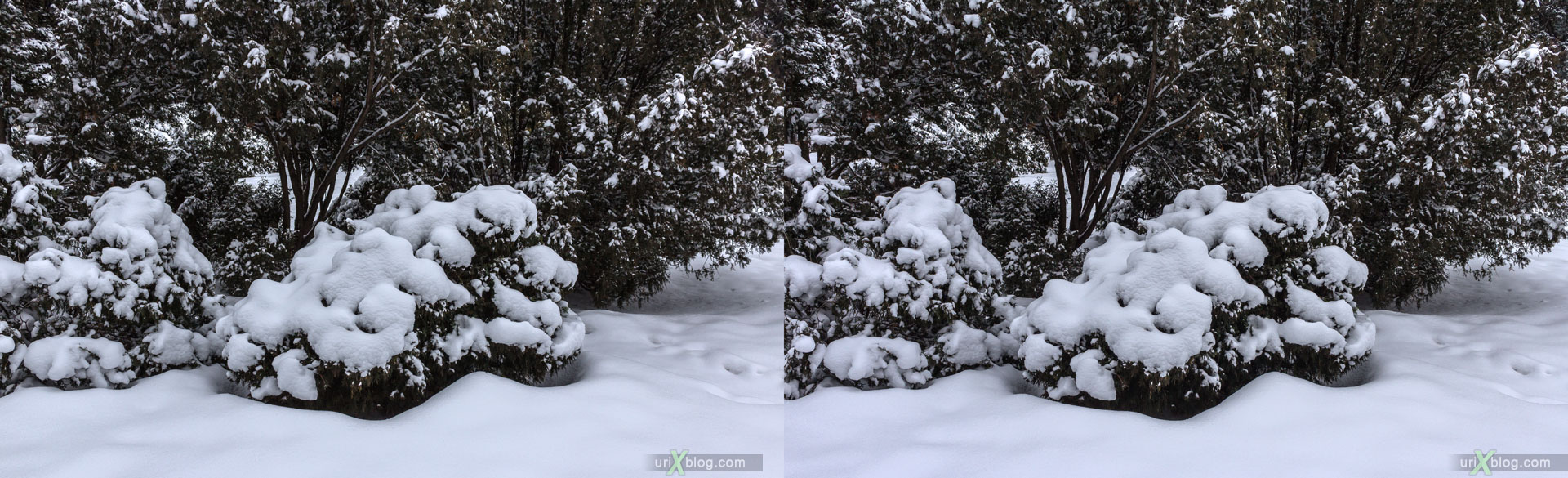 VDNKh, VVTs, park, winter, ice, snow, Moscow, Russia, 3D, stereo pair, cross-eyed, crossview, cross view stereo pair, stereoscopic, 2015