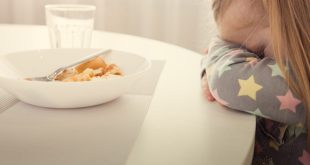 healthy toddler meals for picky eaters
