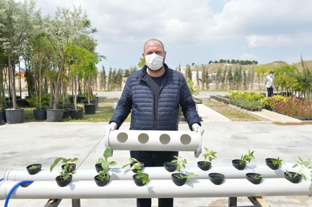 İzmir Çiğli Balkonlarından Topraksız Tarıma Destek