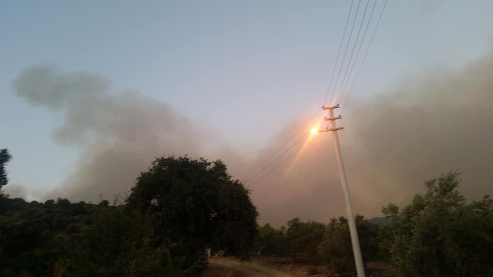 Menderesteki Yangın Kuşadası Körfezinde Ahmetbeyliye Sıçradı