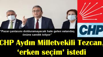 Chp Aydın Milletvekili Tezcan, 'Erken Seçim İstedi