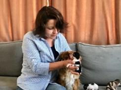 Mira İsimli Köpek, Anneleri Köpeklerin Saldırısıyla Ölen Kedi Yavrularına Annelik Yapıyor