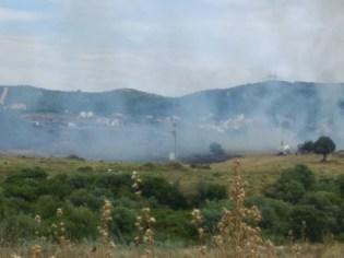 İzmirde Çalılık Alanda Yangın