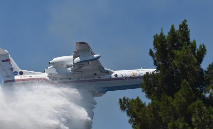 İzmirde Korkutan Orman Yangını