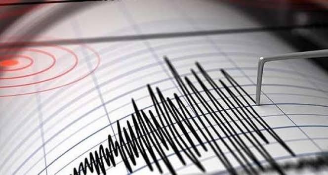 İzmir'de Korkutan Deprem: İlk Belirlemelere Göre Olumsuz İhbar Yok