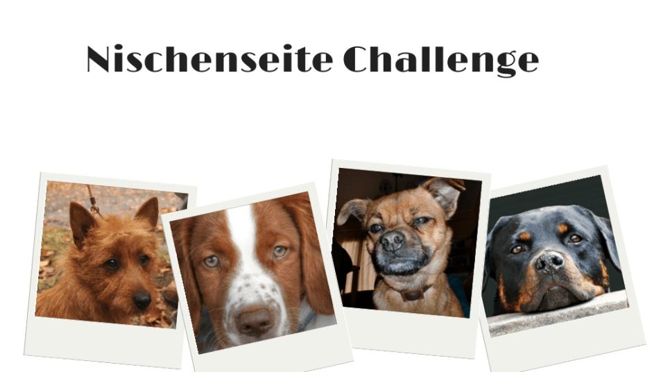 Nischenseite Challenge