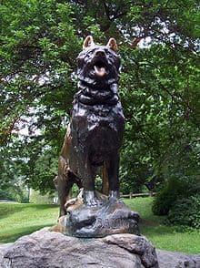 Baltos Statue im Central Park in New York