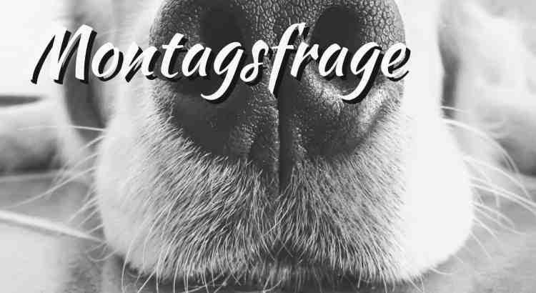 Montags Frage
