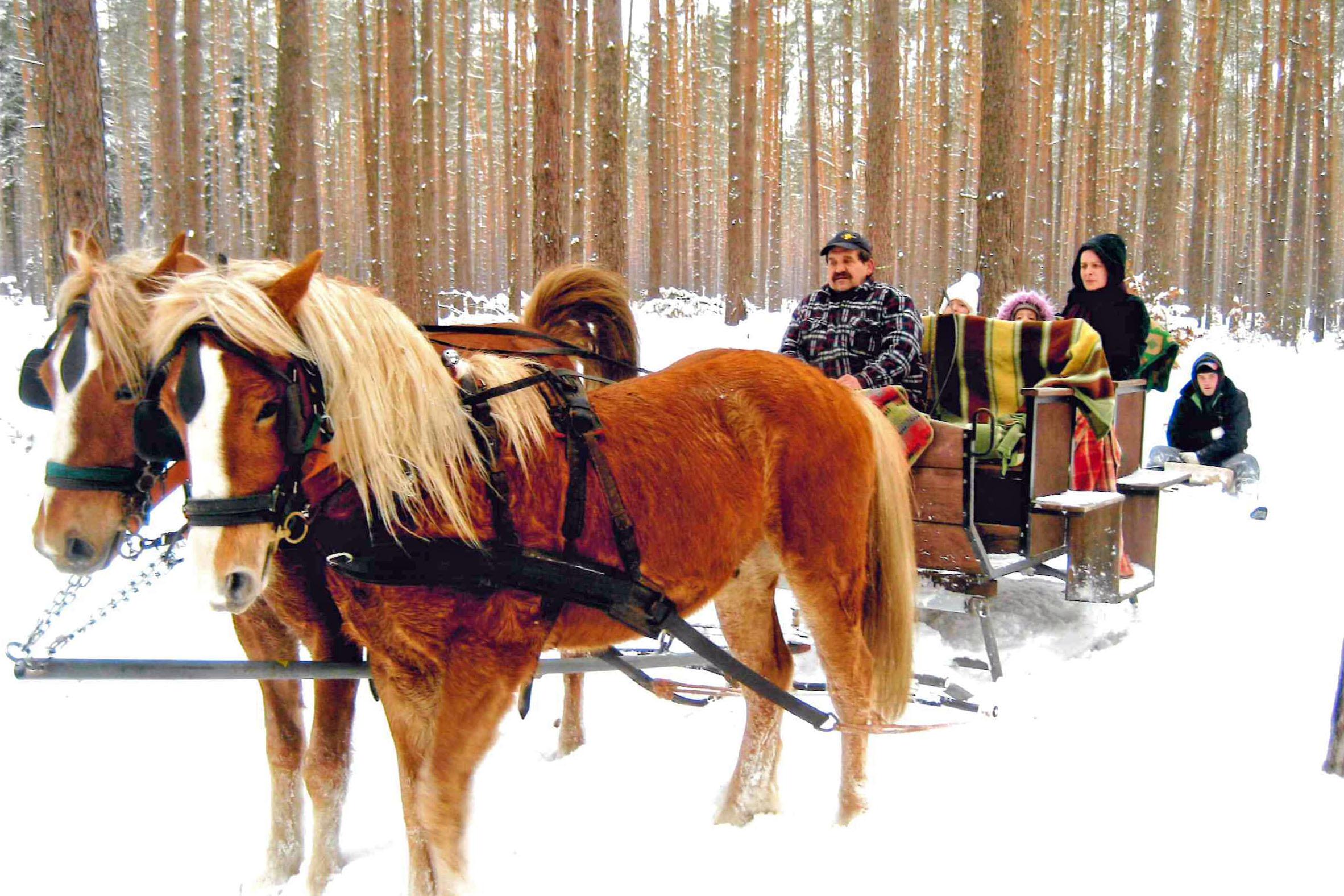 Winterzauber am Stettiner Haff