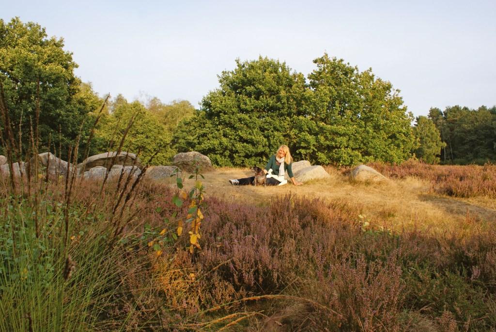 Die besondere Fauna und Flora der Heidelandschaft begeistert jeden Besucher. Als größter Naturpark Niedersachsens bietet die Wilde Geest jede Menge Freiraum für individuelle Entdeckungen.