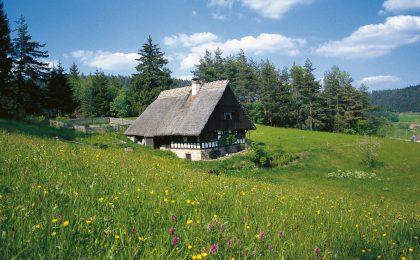 Auch das idyllische Landschaftsschutzgebiet Sulzbachtal im Herzen des mittleren Schwarzwalds ist ein ideales Terrain für Wander- und Radtouren.