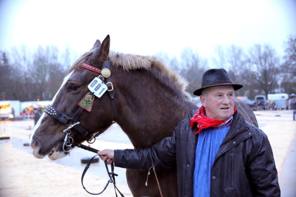 """Ponys, Kalt- und Warmblüter präsentieren sich auf dem """"Schießwasen"""" den fachkundigen Juroren. Prämiert werden nur Stuten, die älter als drei Jahre sind - Der Kalte Markt in Ellwangen"""