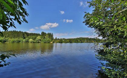 Malerisch eingebettet in die hügeligen Ausläufer der schwäbischen Ostalb liegen die vielen Gewässer des Ellwanger Seenlandes.