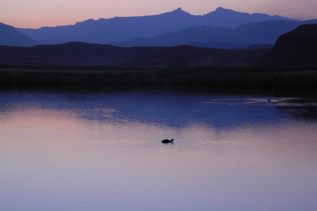 Verzaubernder Anblick: die Berge Lesothos im Abendlicht.
