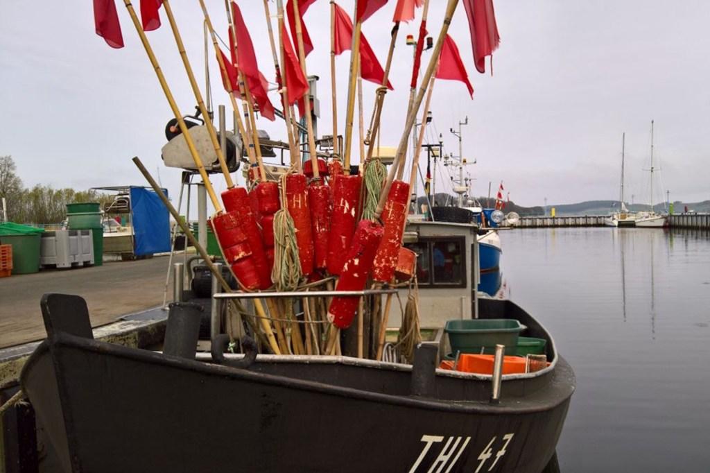 Fischkutter und ein Klönschnack mit den Einheimischen - das gehört für viele Besucher zu einem Urlaub auf Rügen dazu - Gaumenfreuden der Ostsee