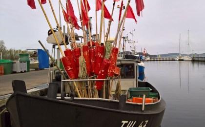 Fischkutter und ein Klönschnack mit den Einheimischen - das gehört für viele Besucher zu einem Urlaub auf Rügen dazu.