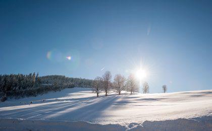 Das Winterwunderland rund um Werfenweng lädt zu ausgiebigen Spaziergängen ein.