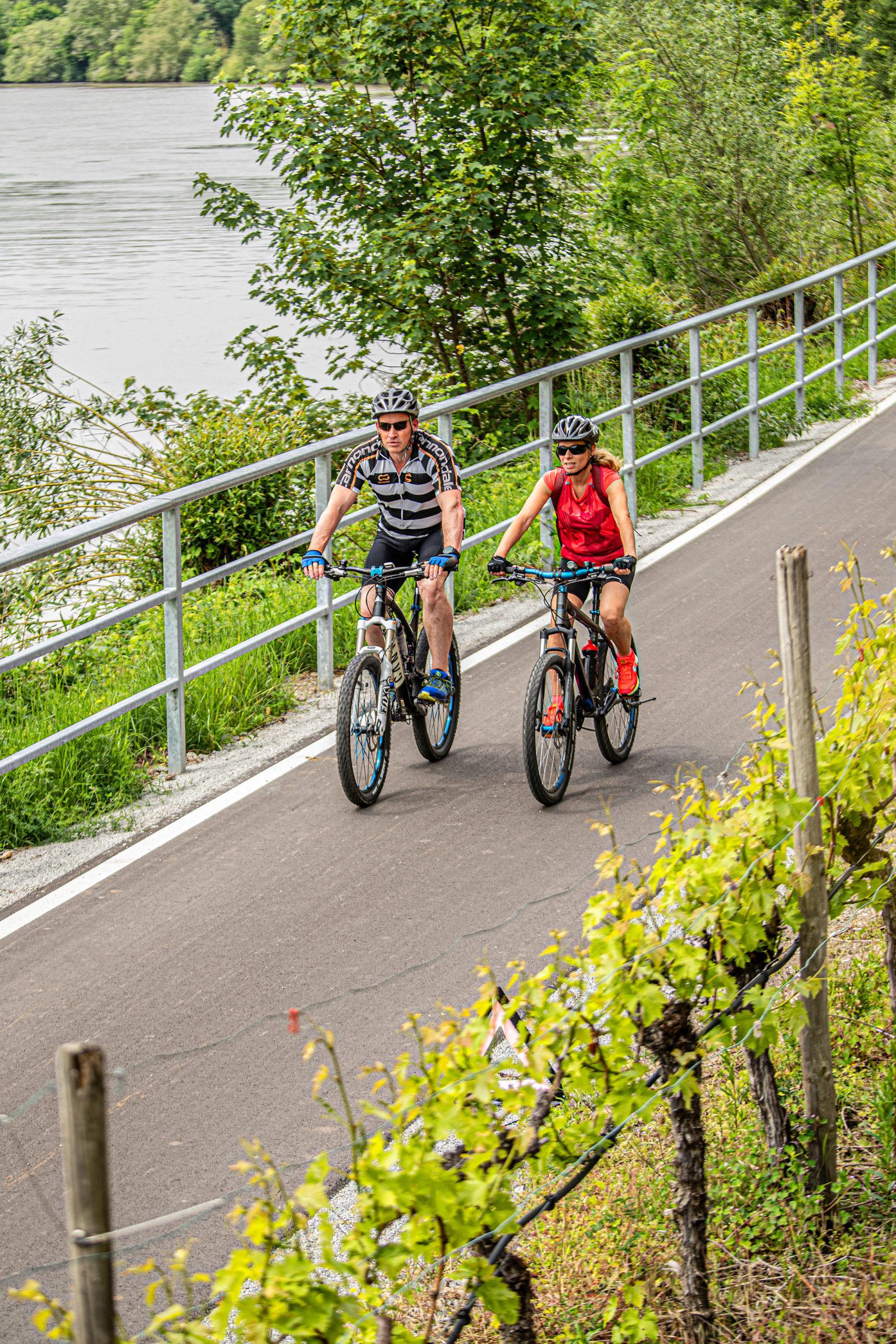 Auf Radtour durchs Ländle - Baden-Württembergs schönste Flussradwege