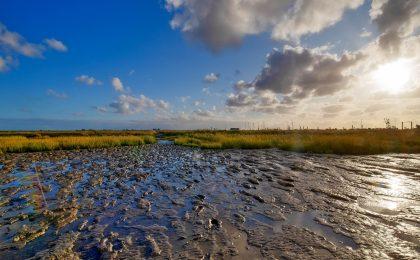 Watt an Ostfrieslands Küste