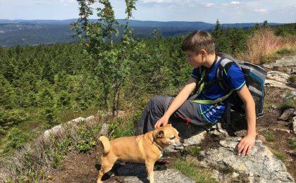 Wandern in der Harzer Bergwelt