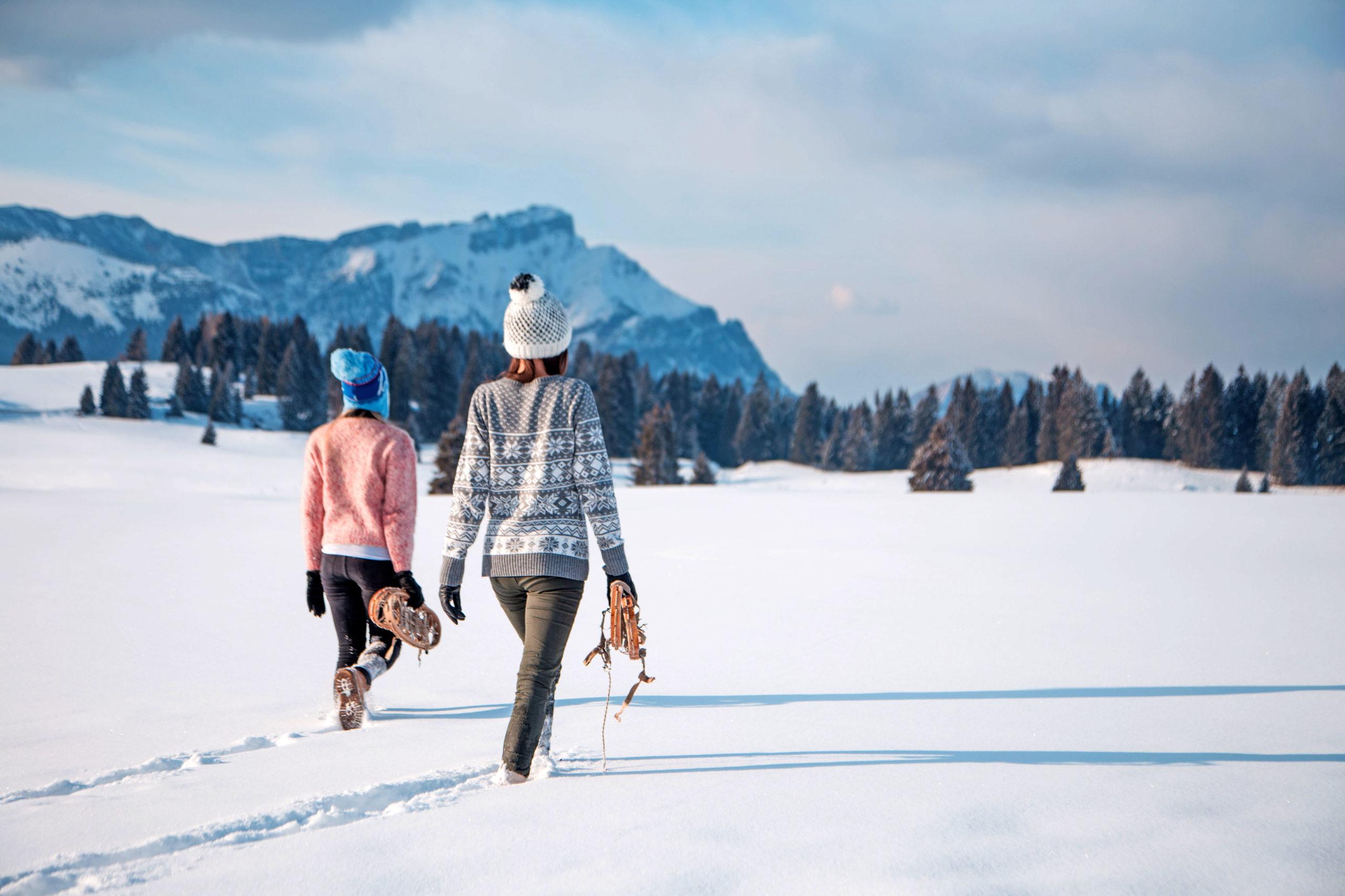 Sanft-mobil durch Schnee und Eis