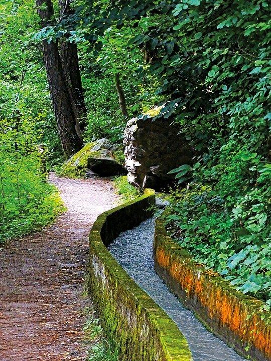 Waldweg Algund in Südtirol
