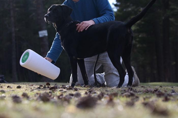 Everpet-Uno-de-Los-Primeros-Crematorios-De-Mascotas-En-El-Mundo-A-Ofrecer-La-Urna-Bios-Pets-la-urna-para-mascotas-banner-1 Uno de los primeros crematorios de mascotas del mundo en ofrecer la Urna Bios Pets.