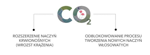 Działanie Karobksyterapii na usuwanie cellulitu i wzrost urody Wrocław