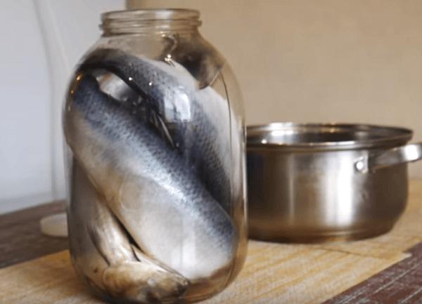 Укладываем рыбу в банку