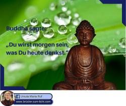 Mein Bezug zu Buddha