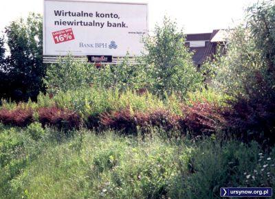 16 procent na lokacie! To były czasy. Tak reklamował się na Imielinie Bank BPH. Dla wyjaśnienia: inflacja w 2001 roku wyniosła 5,5 procent. Zdjęcie: Krzysztof Serdakowski, photochris.com/Polska.htm