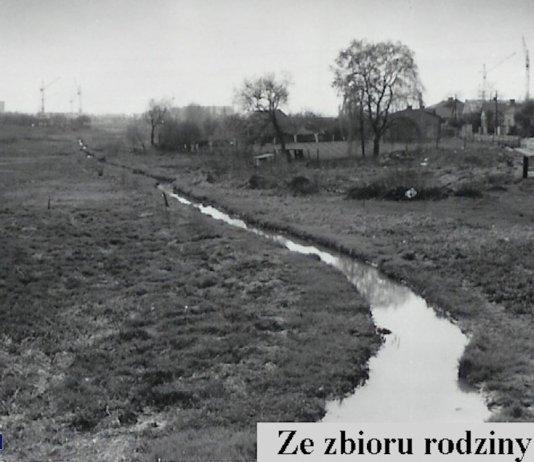 Po koniach, które pasły się tu w maju 1967 (porównajcie zdjęcia) nie ma już śladu. Nieubłaganie nadciąga miasto, już zryło ulicę Tarniny budową kanalizacji. Za chałupami powstaje Służew nad Dolinką. Fot. z archiwum Rodziny Pytko.