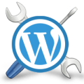 WordPress Setting