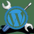 WordPress Setting