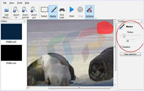 remove video watermark manually