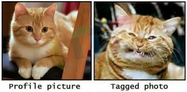 Facebook profile vs tagged photos