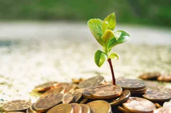 Si ta ruajmë pasurinë?