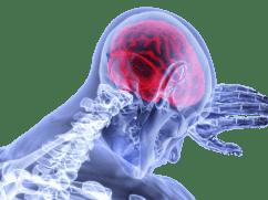Kush e bën trurin të punojë?
