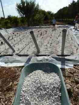 Fitodepurazione, la vasca in costruzione