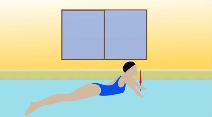 renang gaya dada - posisi lengan