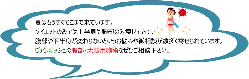 非接触型痩身医療機器【VANQUISH】ヴァンキッシュ