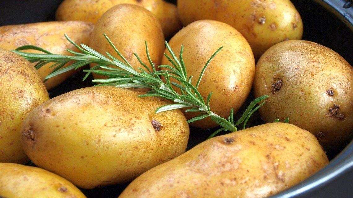 История картофеля. Незаметный клубень, изменивший мир.