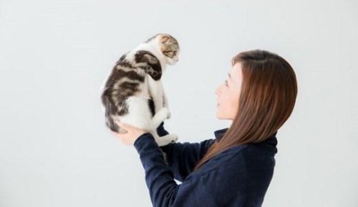 猫の抱き方!負担をかけず安全にサポートする上手な方法!