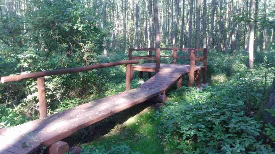 Uroczysko Lublinek jesienią, kolory jesieni na drzewach, leśne ścieżki, drewniany podest w lesie