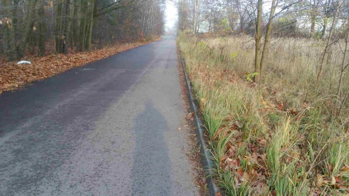 gdzie robić podbiegi, asfaltowa ulica przy lesie
