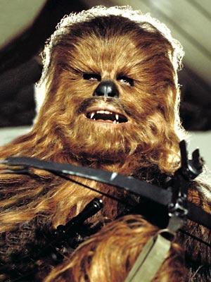haircut chewbacca