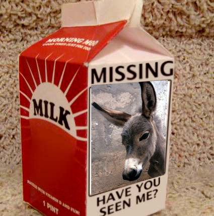 missing wii milk carton lg copy